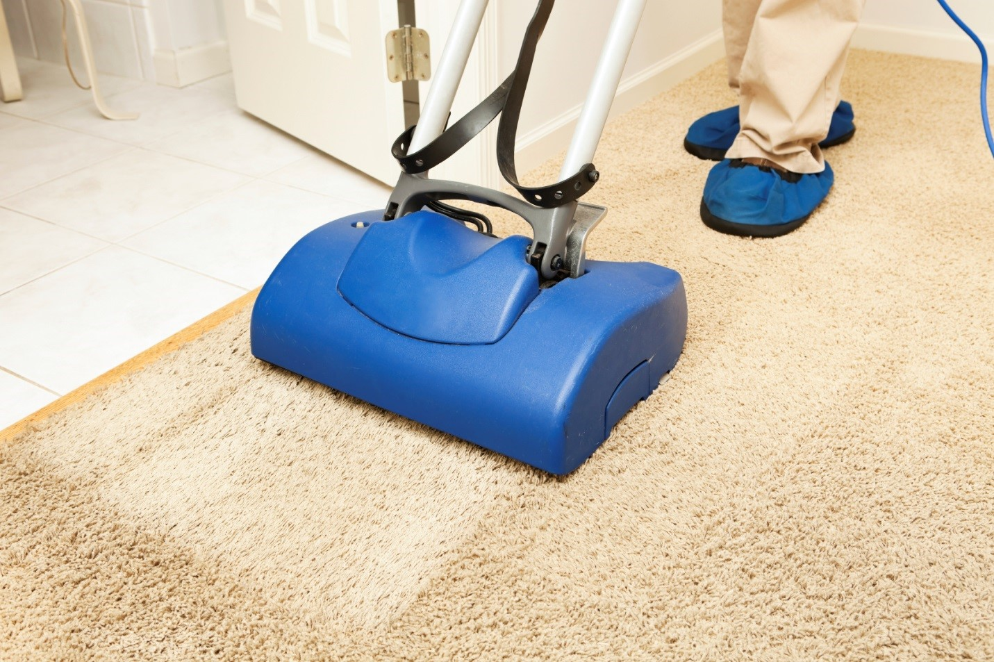 Image result for Cleaning Carpet Services